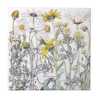 Azulejo botânico das flores do Wildflower do