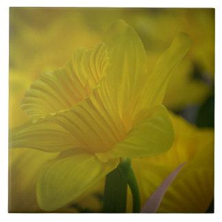 Azulejo cerâmico da foto dos daffodils amarelos