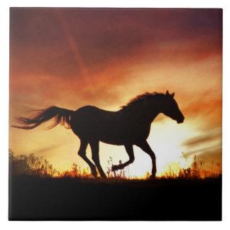 Azulejo da arte do cavalo e do por do sol
