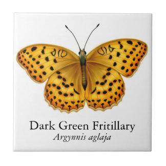 Azulejo da borboleta do Fritillary do Argynnis