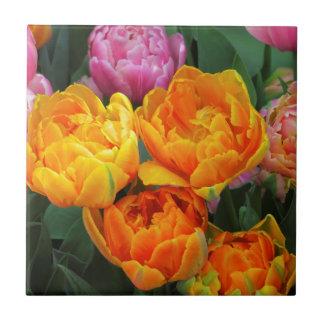 azulejo da tulipa