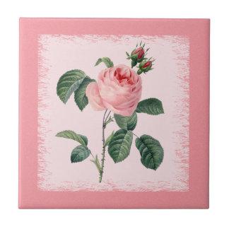 Azulejo de Redoute do rosa do rosa Azulejo Quadrado Pequeno