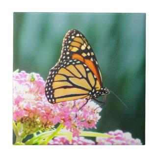 Azulejo decorativo da beleza da borboleta