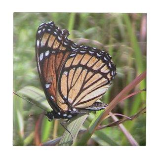 Azulejo decorativo da borboleta de monarca