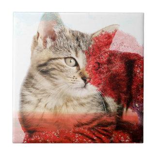 Azulejo do gato
