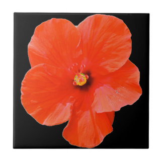 Azulejo do hibiscus