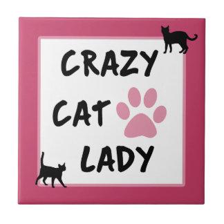 Azulejo louco da senhora Foto do gato