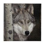 Azulejo ou Trivet da arte da tinta do lobo cinzent