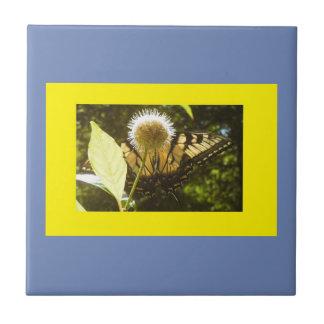 Azulejo quadro do monarca azul amarelo
