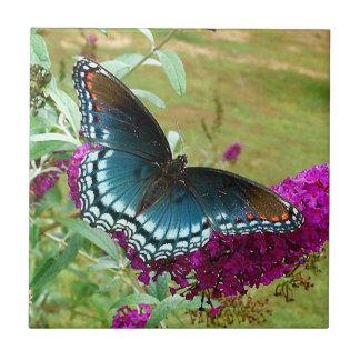 Azulejo roxo manchado vermelho da borboleta
