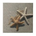 Azulejo Trivet da estrela do mar
