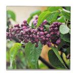Azulejo/Trivet do Lilac