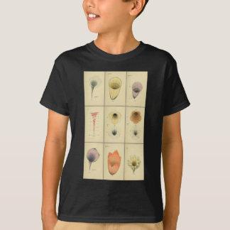 B.W. A psicologia geométrica de Betts Camiseta
