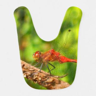 babador da libélula