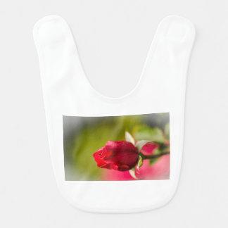 Babador Design ascendente próximo da rosa vermelha