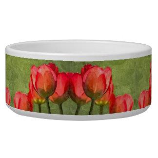 Bacia do animal de estimação das tulipas grande tigela
