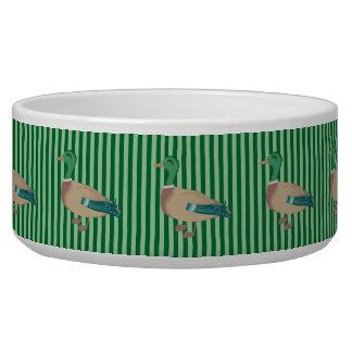 Bacia listrada verde do cão do pato tigela