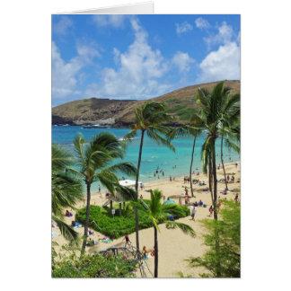 Baía Havaí de Hanauma - férias 2014 Cartões
