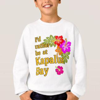 Baía HAVAÍ de Kapalua eu preferencialmente estaria Agasalho