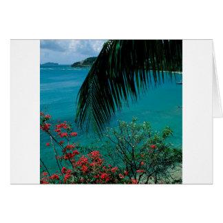 Baía tropical Bequia da amizade da ilha Cartão Comemorativo