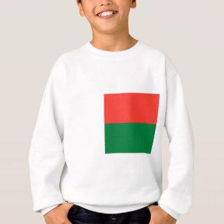 Baixo custo! Bandeira de Madagascar Agasalho