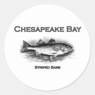 Baixo listrado de baía de Chesapeake Adesivo