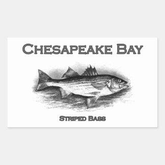 Baixo listrado de baía de Chesapeake Adesivo Retangular