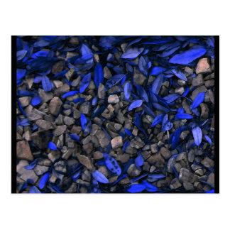 """""""Balance 'o cartão da arte de JTG dos azuis de n"""""""