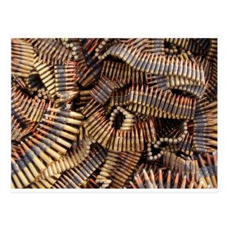 Balas, munição cartão postal