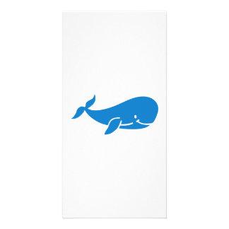Baleia azul bonito cartão com foto
