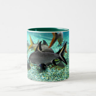 Banco de areia dos peixes na primavera, espanha caneca de café em dois tons