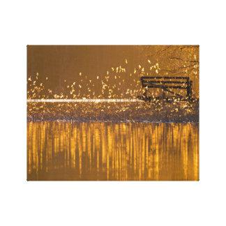 Banco só pelo lago na luz dourada impressão em canvas