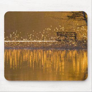 Banco só pelo lago no mousepad claro dourado