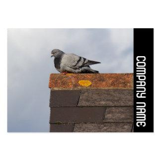 Banda lateral - pombo do bom dia cartão de visita grande