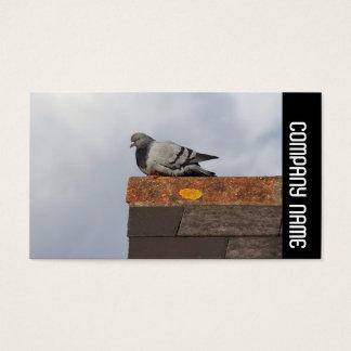 Banda lateral - pombo do bom dia cartão de visitas