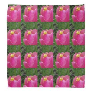 Bandana Aranha amarela brilhante na flor cor-de-rosa