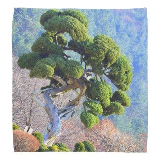 Bandana Árvore do zimbro do milênio