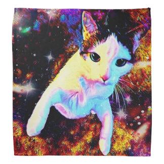 Bandana bonito colorido do disco do gatinho da