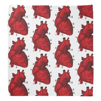 Bandana Coração anatômico