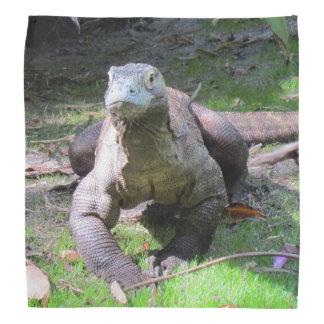 Bandana do dragão de Komodo