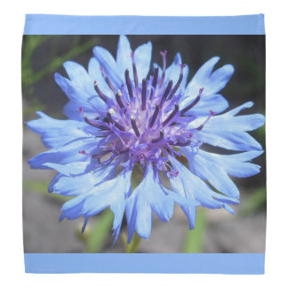 Bandana floral do botão do solteiro azul