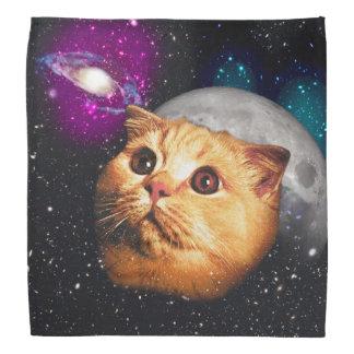 Bandana lua do gato, gato e lua, catmoon, gato da lua
