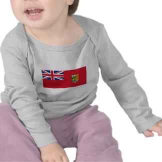 Bandeira canadense (1868) t-shirt