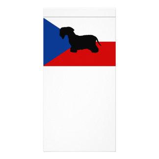 bandeira cesky da checo-república do silo do cartão com foto