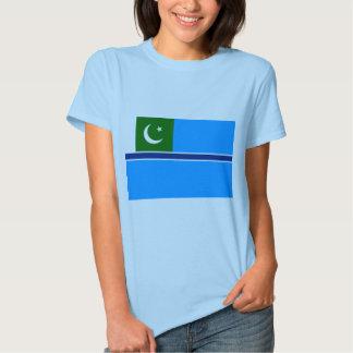 Bandeira civil Paquistão do ar, Paquistão Tshirts