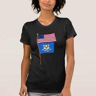 Bandeira da estrela dos E.U. 13 no pólo com Connec Tshirt