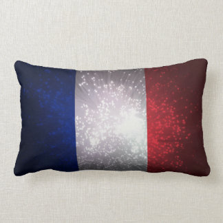 Bandeira de France Travesseiros De Decoração