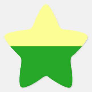 Bandeira de Haia Adesivo Estrela