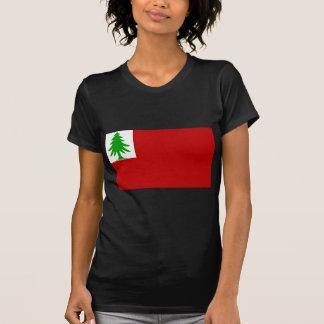 Bandeira de Nova Inglaterra Tshirts