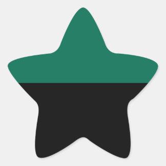 Bandeira de Texel Adesivo Estrela